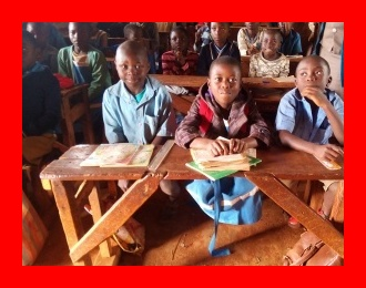 Verdant Cameroon is Africa's largest exporter of tropical hardwood to the European Union. But ironically, in some regions of the country, school children are allegedly sitting on bare floors due to a lack of wooden benches in their classrooms. The Bridge MAG. Image