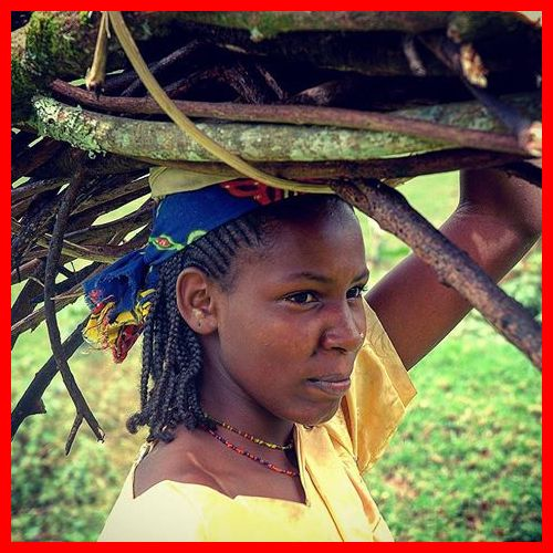 Une fille Bororo de la forêt tropicale du Cameroun. L'huile de noix de coco est exempte d'effets secondaires néfastes sur la peau, cheveux, ongles et reste du corps, et a été utilisée en toute sécurité pendant des milliers d'années. The Bridge MAG. Image